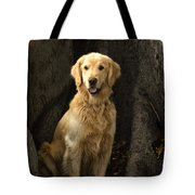 Handsome Boy Tote Bag