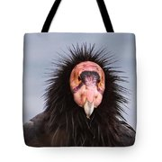 Handsome California Condor Tote Bag