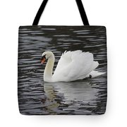 Handsome He Glides Tote Bag