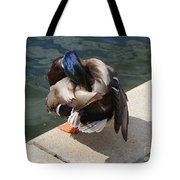 Handsome Mallard Tote Bag