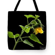 Hang Down Your Head Tote Bag