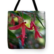 Hanging Asian Lillies Tote Bag