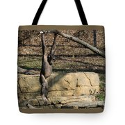 Hanging Chimp 365 Tote Bag