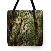 Hanging Moss And Giant Oaks Tote Bag