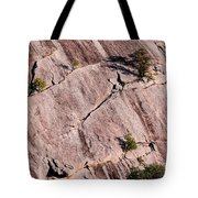 Hanging On To Dear Life - Enchanted Rock State Natural Area - Fredericksburg  Llano Tote Bag