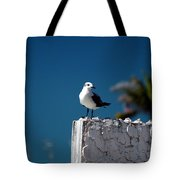Hanging Out In Key West 2 Tote Bag