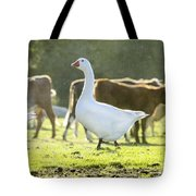 Hanging With The Herd Tote Bag