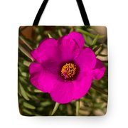 Happily Vibrantly Pink With A Golden Yellow Center Tote Bag