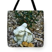 Happiness Is A Scratch And A Toadstool Tote Bag