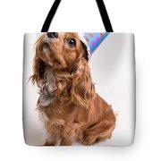 Happy Birthday Dog Tote Bag