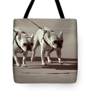 Happy Dogs 14 Tote Bag