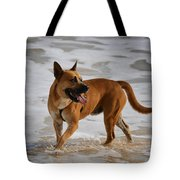 Happy Dogs 5 Tote Bag