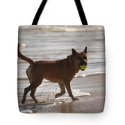 Happy Dogs 7 Tote Bag
