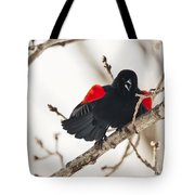 Happy For Spring Tote Bag