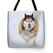 Happy Husky Tote Bag