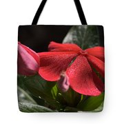 Happy In The Light Tote Bag