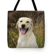 Happy Labrador Tote Bag
