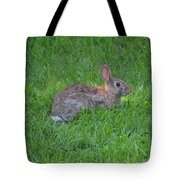Happy Rabbit Tote Bag