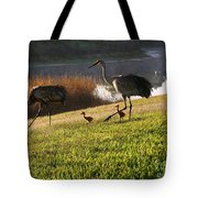 Happy Sandhill Crane Family - Original Tote Bag