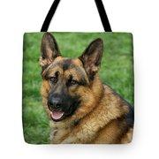 Happy Shepherd Tote Bag
