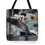 Harbor Pelican And Gull Tote Bag