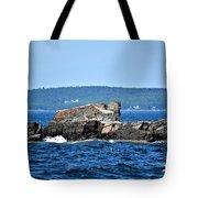 Harbor Rocks Tote Bag
