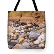Harbour Seal On Pebble Beach Tote Bag