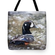 Harlequin Duck In Rapids Tote Bag