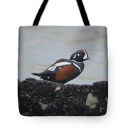 Harlequin Duck Tote Bag