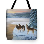 Harmony As The Sun Sets Tote Bag