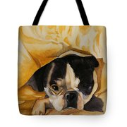 Harold's Bed Tote Bag