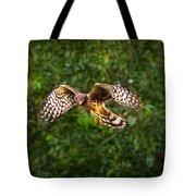 Harrier Hunt Tote Bag