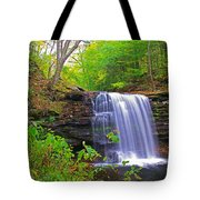 Harrison Wright Early Fall Tote Bag