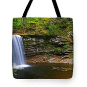 Harrison Wright Falls And Pool Tote Bag