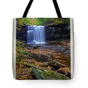 Harrison Wright Falls In Autumn Tote Bag
