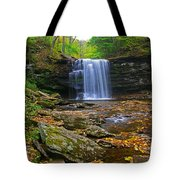 Harrison Wright Falls In Early Fall Tote Bag