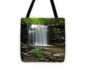 Harrison Wright Falls Tote Bag