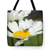 Harvastman On Daisy Looking For Food Tote Bag