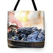 Harvest At Vineyard In Santa Cruz Tote Bag