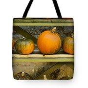 Harvest Display Tote Bag