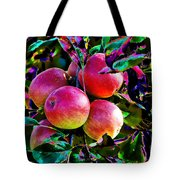 Harvesting Apples Tote Bag