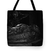 Haunted Crypt Tote Bag
