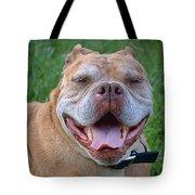 Havana's Grin Tote Bag