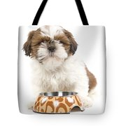 Havanese With Dog Bowl Tote Bag
