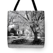 Have A Picnic Tote Bag