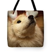 Have I Been A Good Doggie? Tote Bag