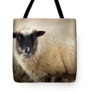 Have You Any Wool? Tote Bag