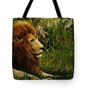 Having A Break Tote Bag