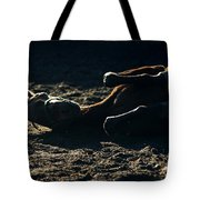 Having Fun Tote Bag