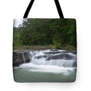 Haw Creek Falls Tote Bag
